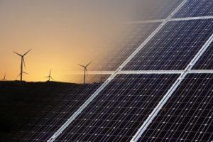 Bedrijven in Amsterdam-Zuidoost slaan handen ineen voor duurzaamheid