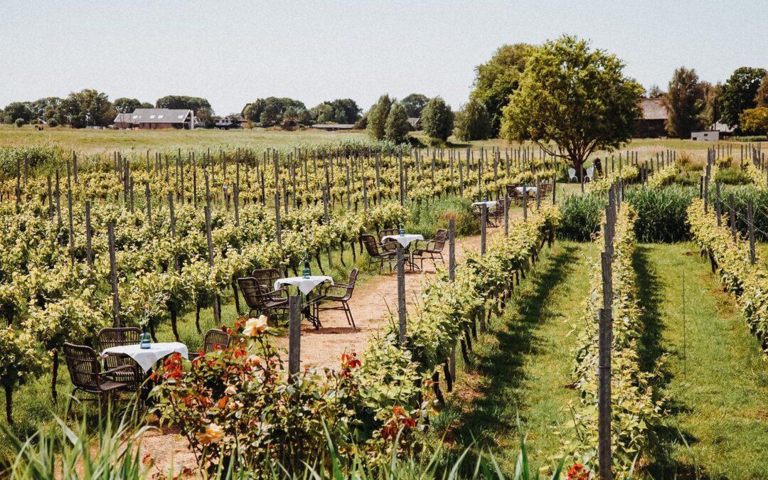 La douce France in Amstelveen: Genieten van fruits de mer en lokale wijnen